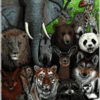 الأنواع المهددة بالانقراض