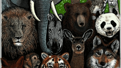 Photo of الأنواع المهددة بالانقراض