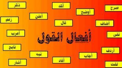 Photo of في استخدام أفعال القول وفيما يليها