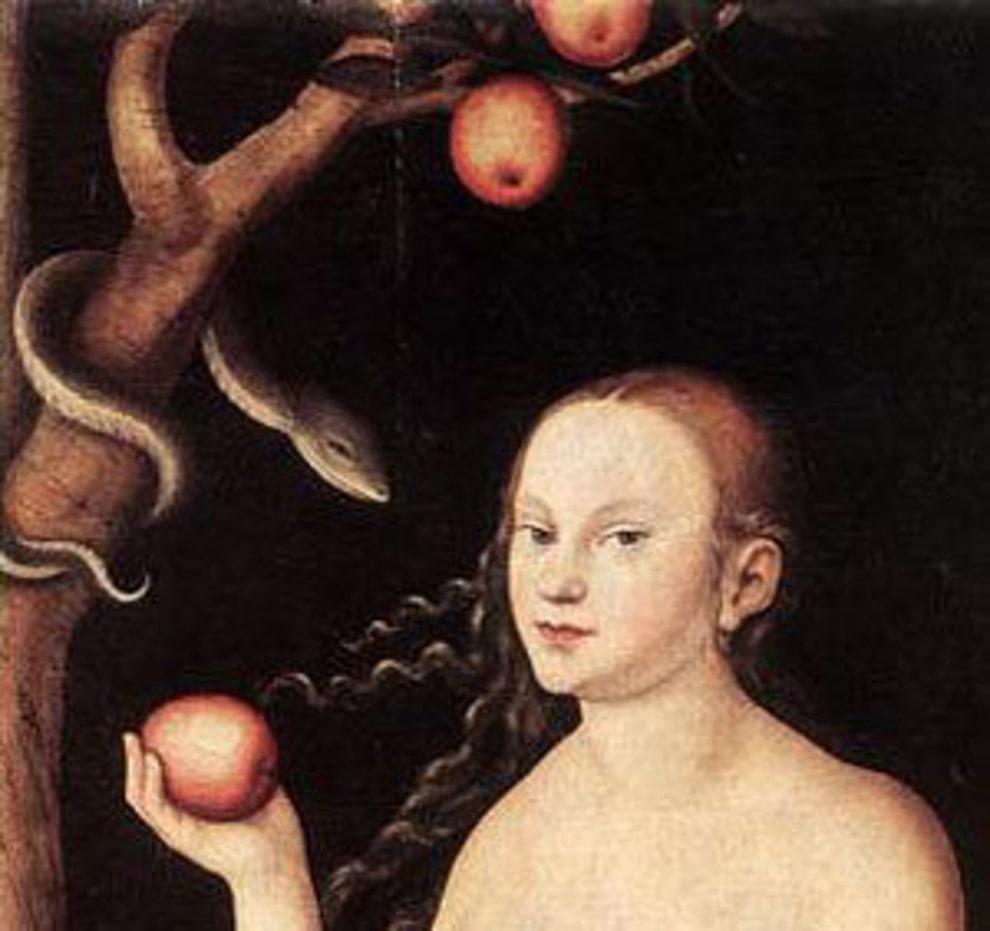 تفاحة حواء
