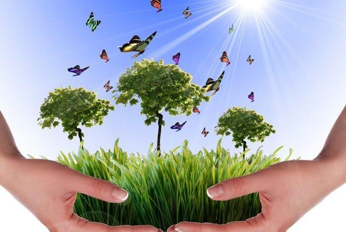 تقييم الأثر البيئي