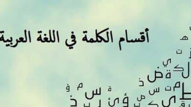 صورة أقسام الكلمة العربية