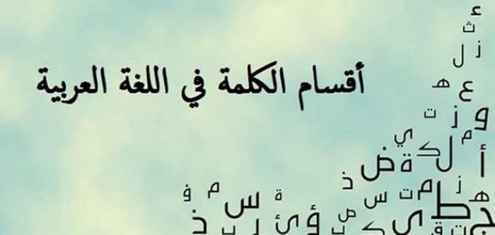 أقسام الكلمة العربية