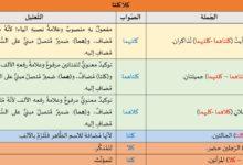 Photo of تدريبات لغوية: كلا وكلتا