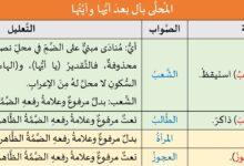 Photo of تدريبات لغوية: المحلى بأل بعد أيها وأيتها