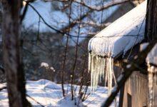صورة رقاقات الثلج
